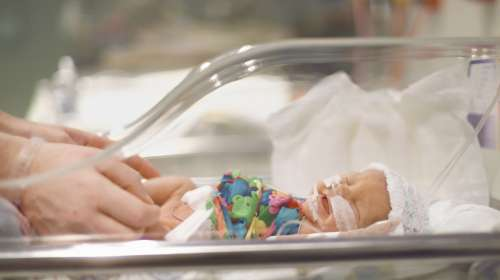 Premature baby boy in Intensive Care Unit at hospital